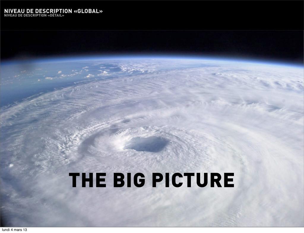 31 THE BIG PICTURE NIVEAU DE DESCRIPTION «GLOBA...