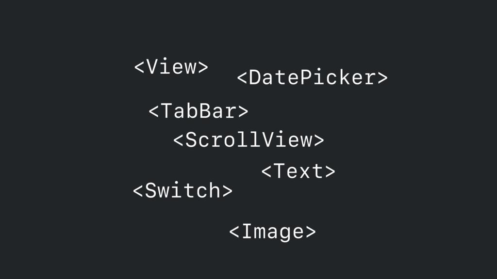 <ScrollView> <Text> <View> <DatePicker> <Switch...