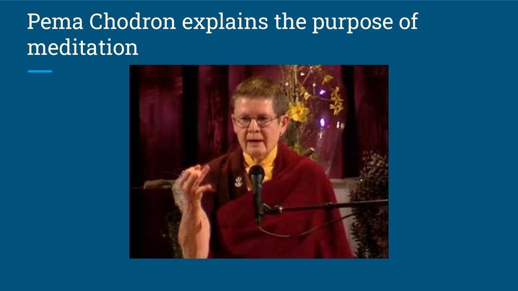 Pema Chodron explains the purpose of meditation