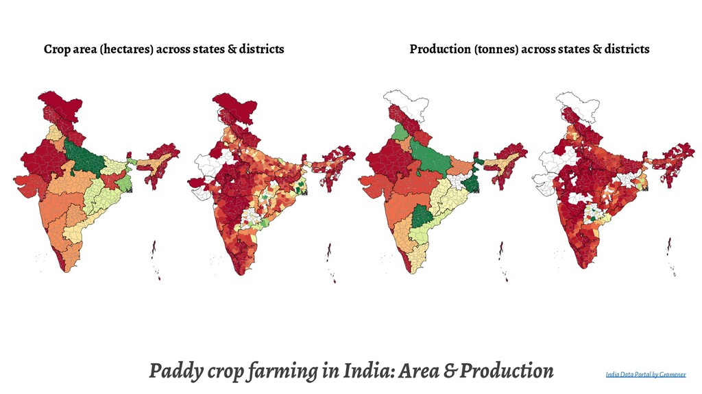 Paddy crop farming in India: Area & Production ...