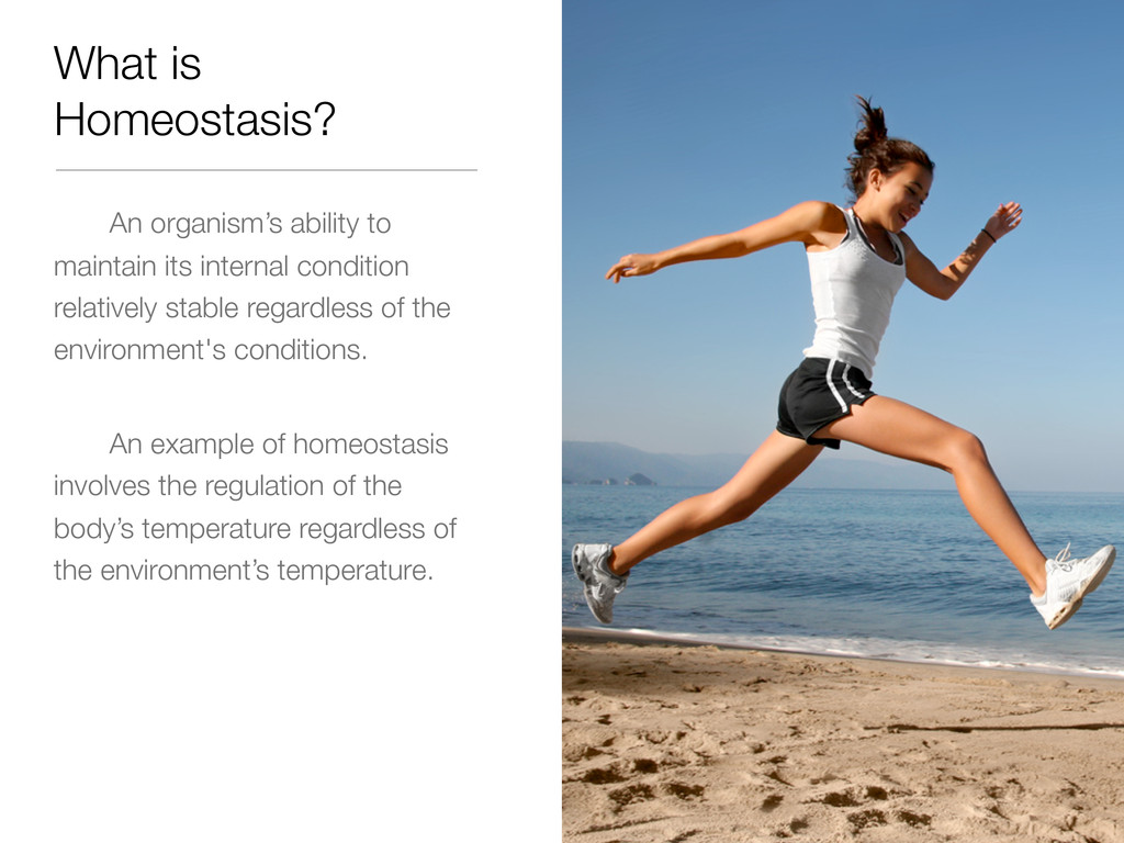 What is Homeostasis? An organism's ability to m...