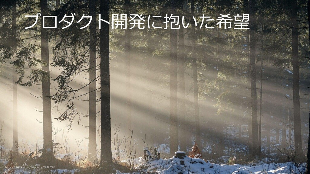 プロダクト開発に抱いた希望 https://pixabay.com/ja/photos/584...