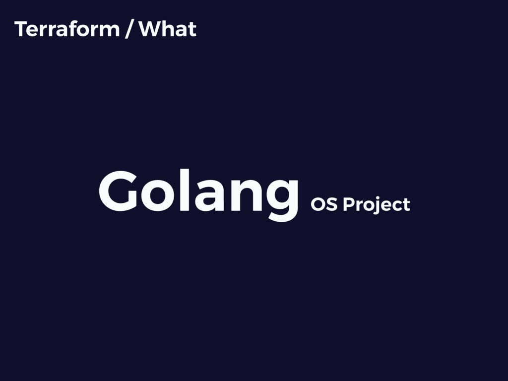 Golang OS Project Terraform / What