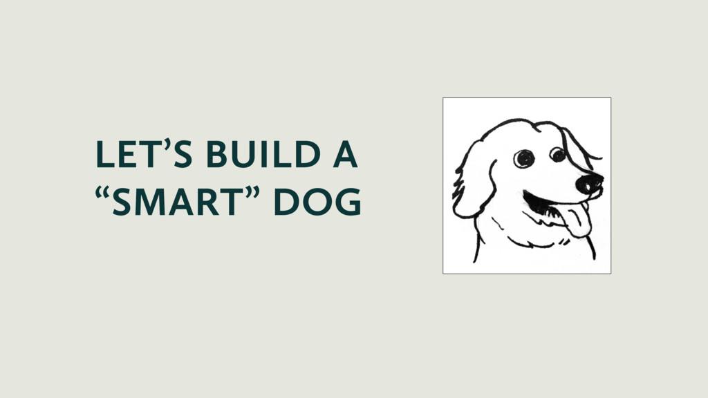 "LET'S BUILD A ""SMART"" DOG"