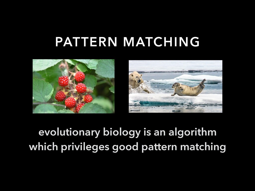 PATTERN MATCHING evolutionary biology is an alg...