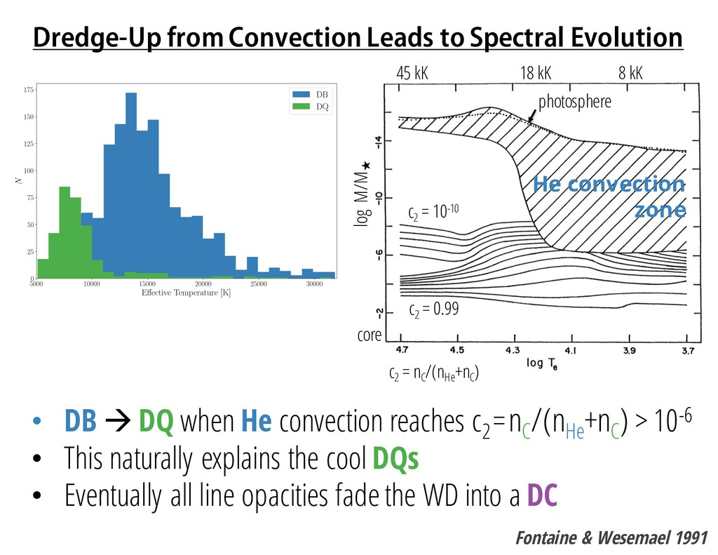 Dredge-Up from Convection Leads to Spectral Evo...