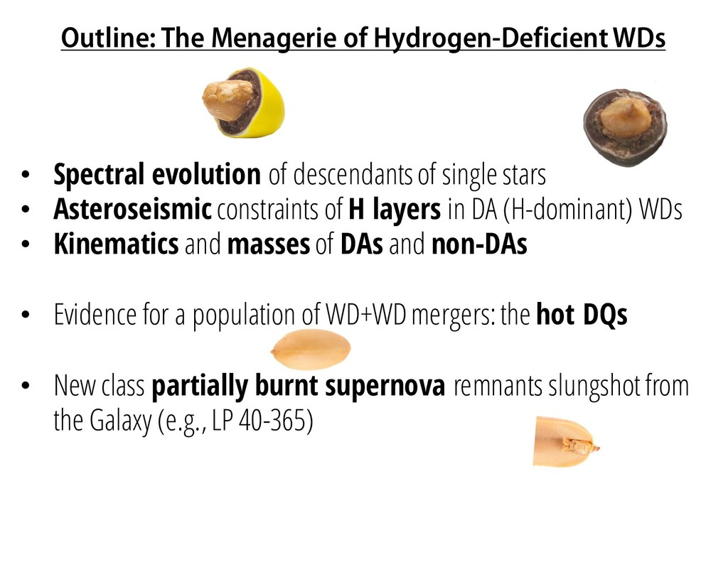 Outline: The Menagerie of Hydrogen-Deficient WD...