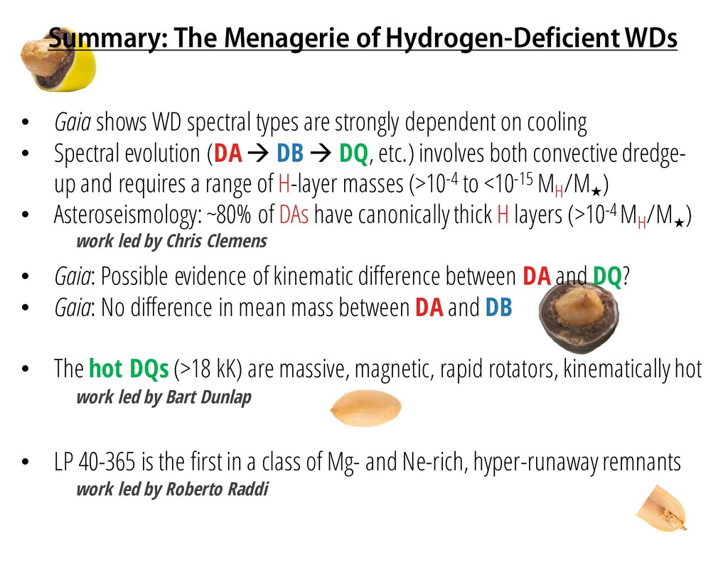 Summary: The Menagerie of Hydrogen-Deficient WD...