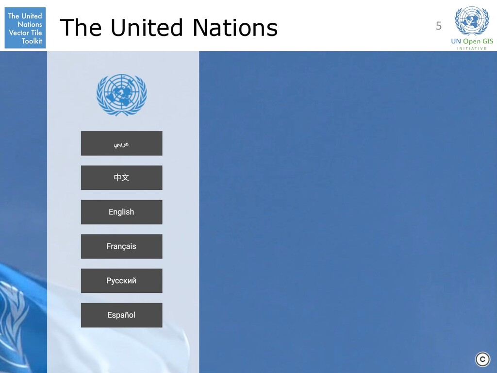 The United Nations 5