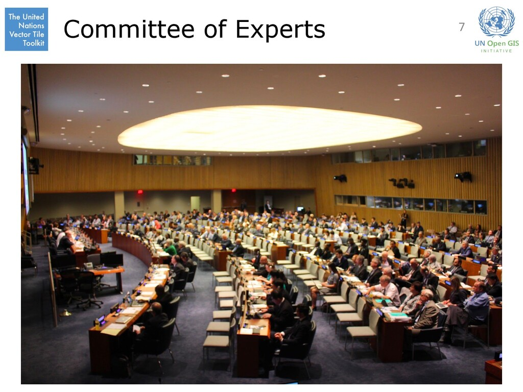 Committee of Experts 7