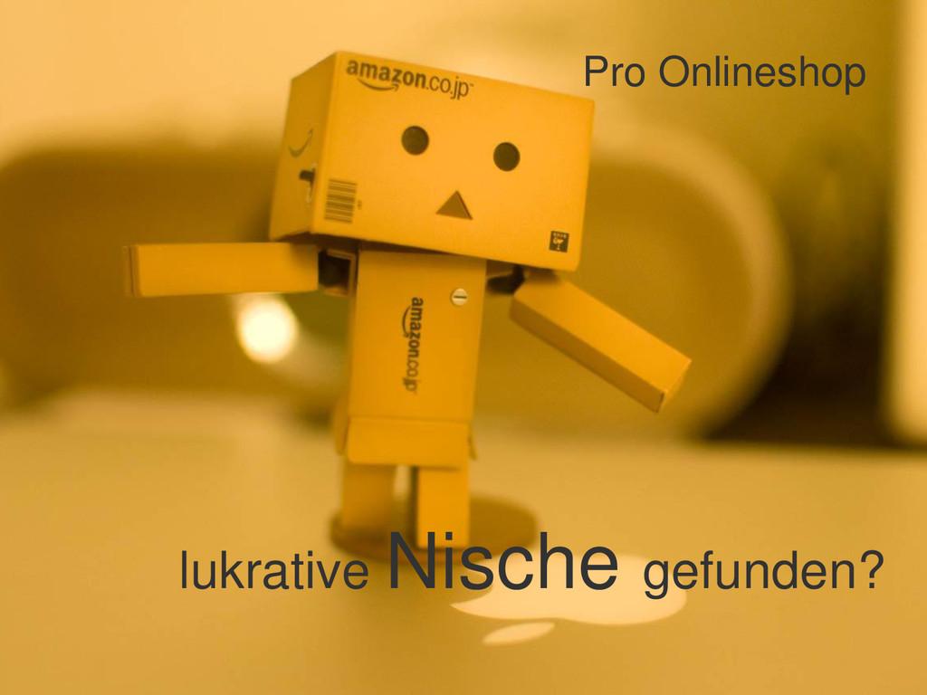 Pro Onlineshop lukrative Nische gefunden?