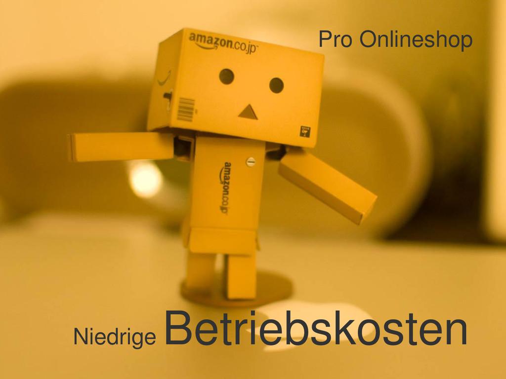 Pro Onlineshop Niedrige Betriebskosten