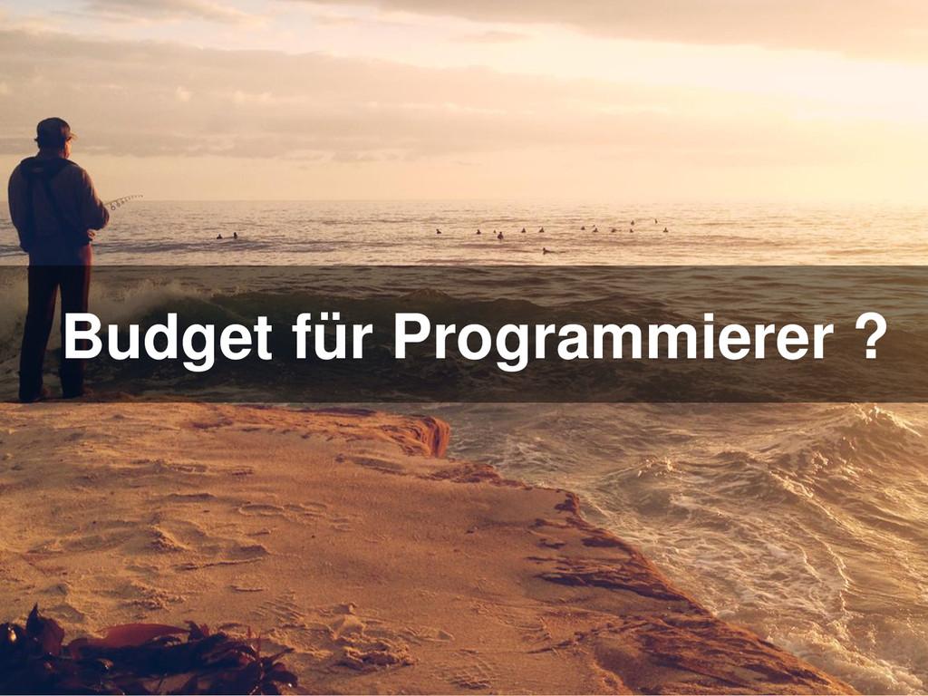 Budget für Programmierer ?