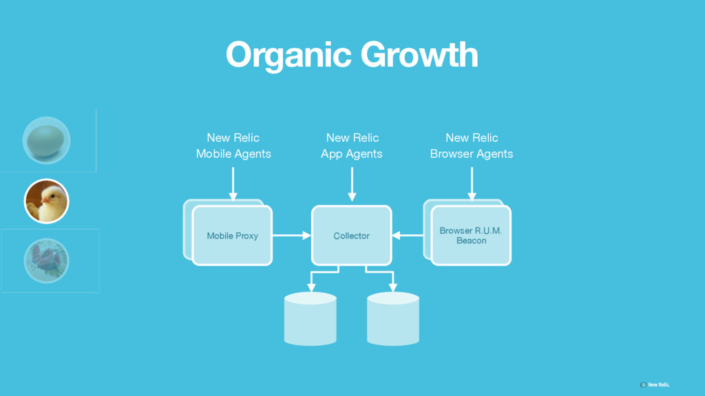 Organic Growth Collector New Relic   App Agents...