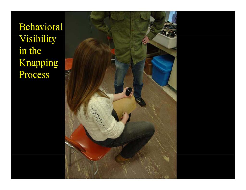 Behavioral i ibili Visibility in the i Knapping...