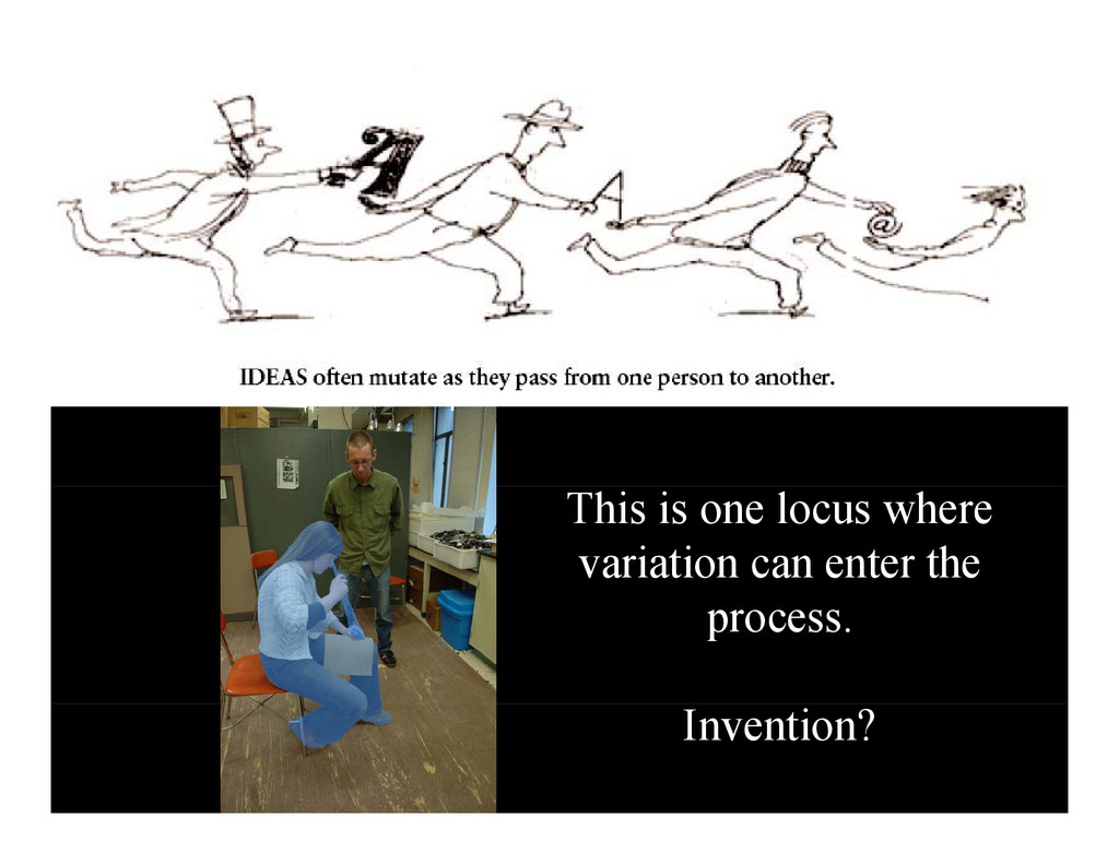 This is one locus where variation can enter the...