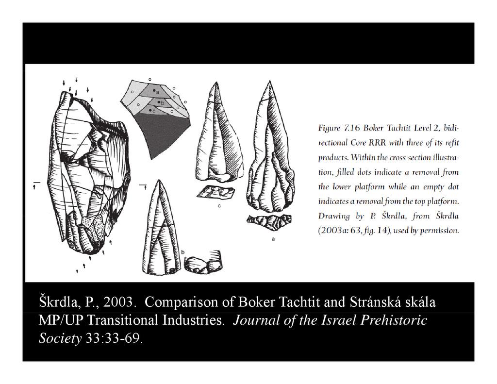 Škrdla, P., 2003. Comparison of Boker Tachtit a...