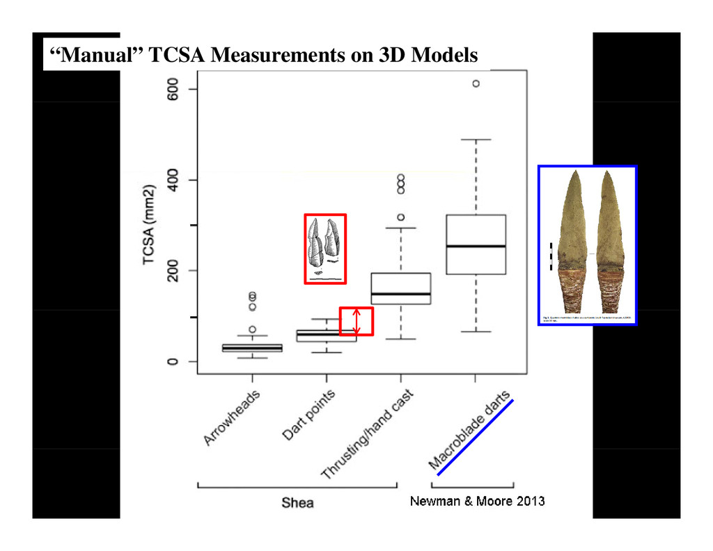 """Manual"" TCSA Measurements on 3D Models"