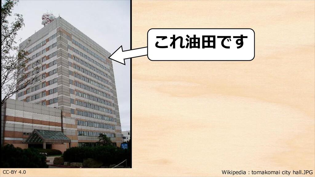 CC-BY 4.0 これ油田です Wikipedia:tomakomai city hall....