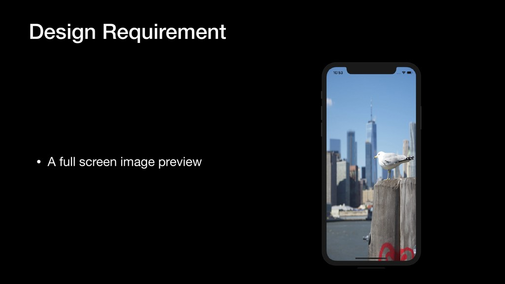 Design Requirement • A full screen image preview