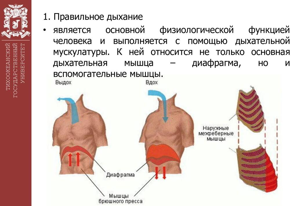 ТИХООКЕАНСКИЙ ГОСУДАРСТВЕННЫЙ УНИВЕРСИТЕТ 1. Пр...
