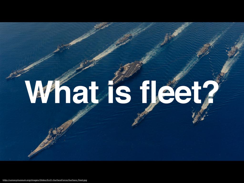 What is fleet? IUUQVTOBWZNVTFVNPSHJNBHFT4...