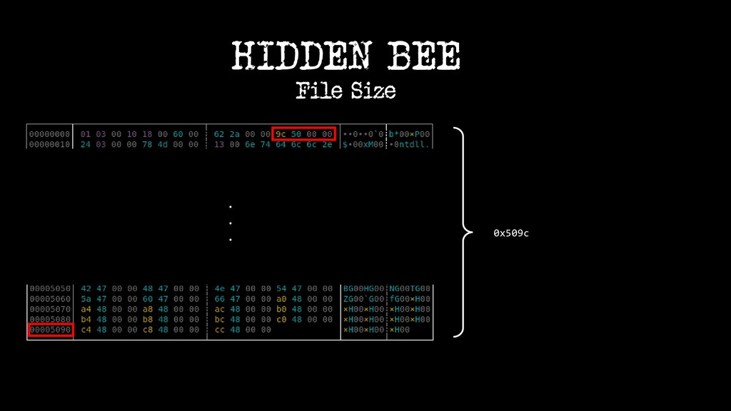 0x509c HIDDEN BEE File Size . . .