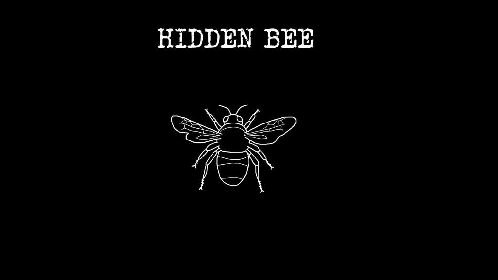 HIDDEN BEE