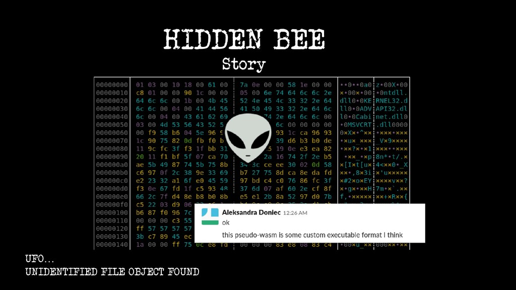 ? UFO… UNIDENTIFIED FILE OBJECT FOUND HIDDEN BE...