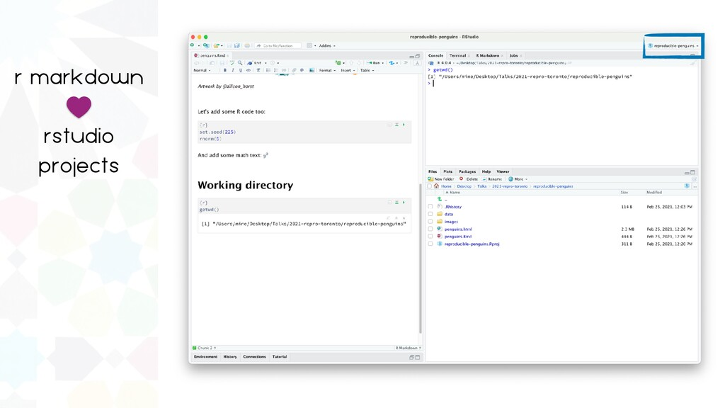 r markdown   rstudio   projects