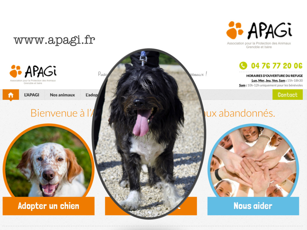 www.apagi.fr