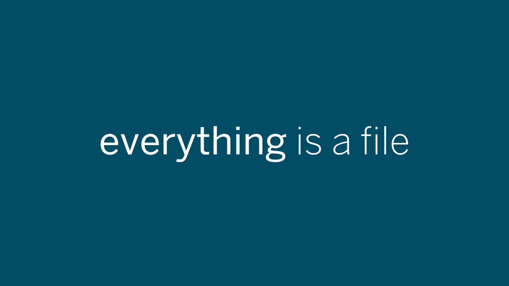 everything is a file