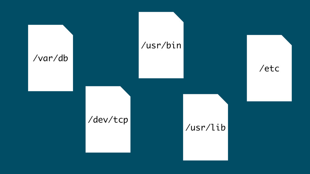 /var/db /usr/lib /dev/tcp /usr/bin /etc