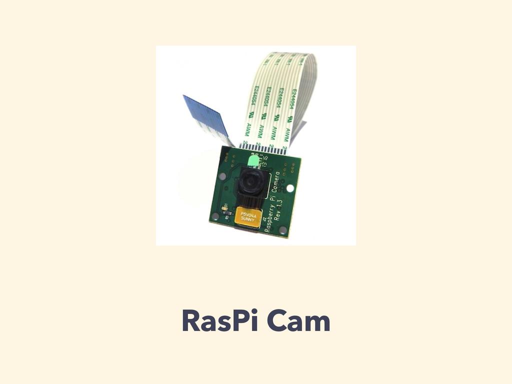 RasPi Cam