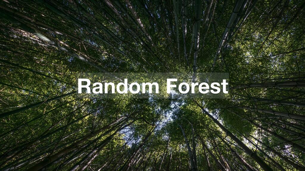 79 Random Forest