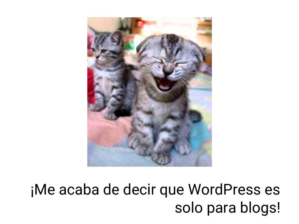 ¡Me acaba de decir que WordPress es solo para b...
