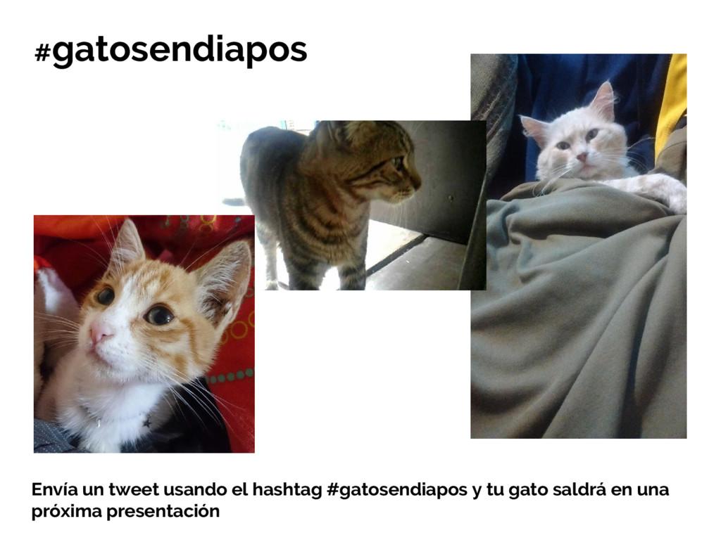 Envía un tweet usando el hashtag #gatosendiapos...