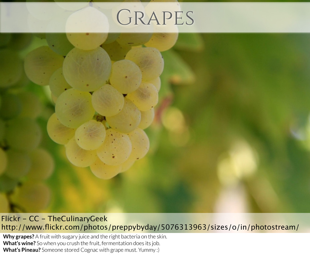 Grapes Flickr - CC - TheCulinaryGeek http://www...