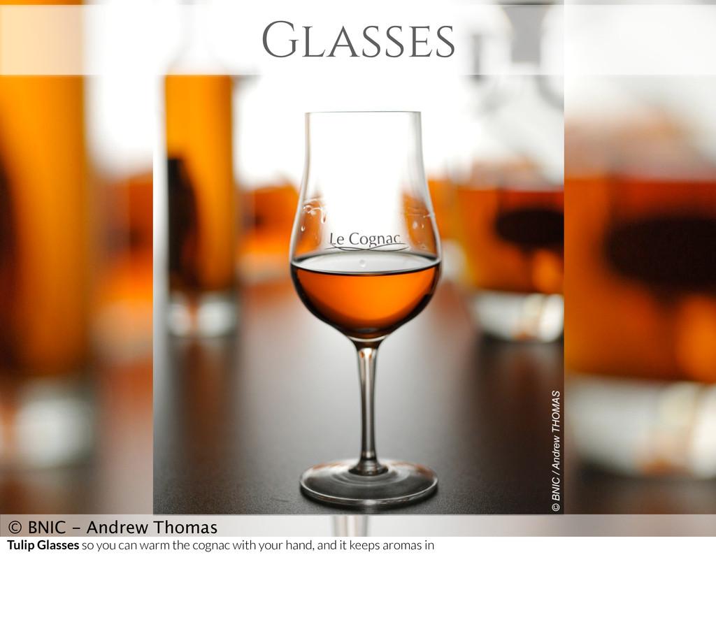 Glasses © BNIC - Andrew Thomas Tulip Glasses so...