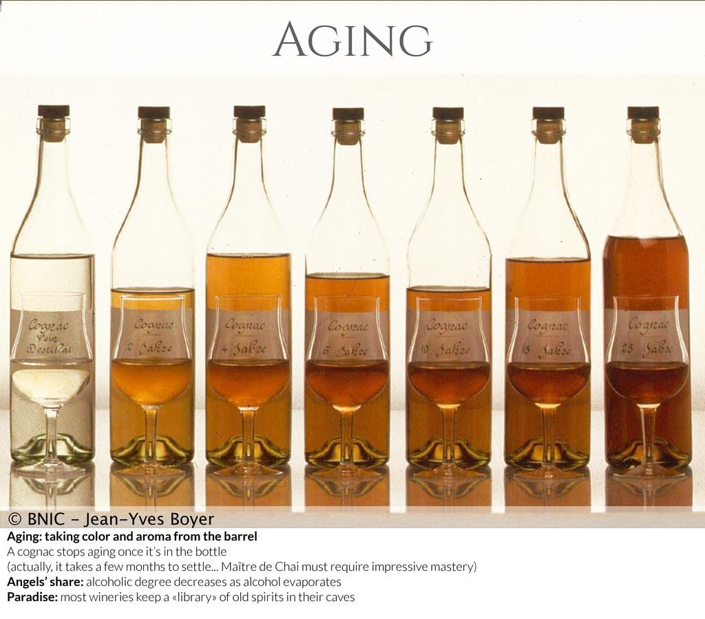 Aging © BNIC - Jean-Yves Boyer Aging: taking co...
