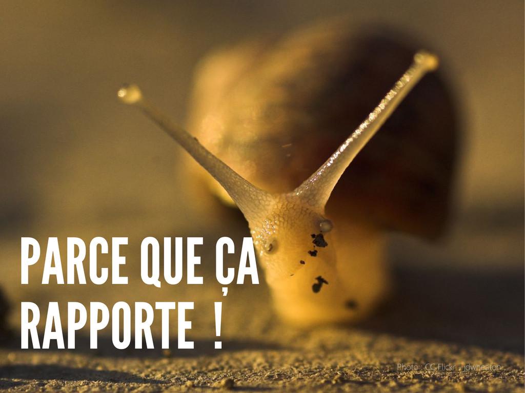 PARCE QUE ÇA RAPPORTE ! Photo : CC Flickr - jdw...