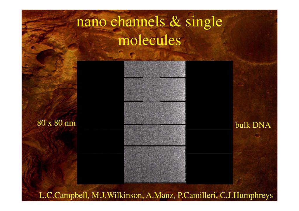 nano channels & single molecules 80 x 80 nm cha...