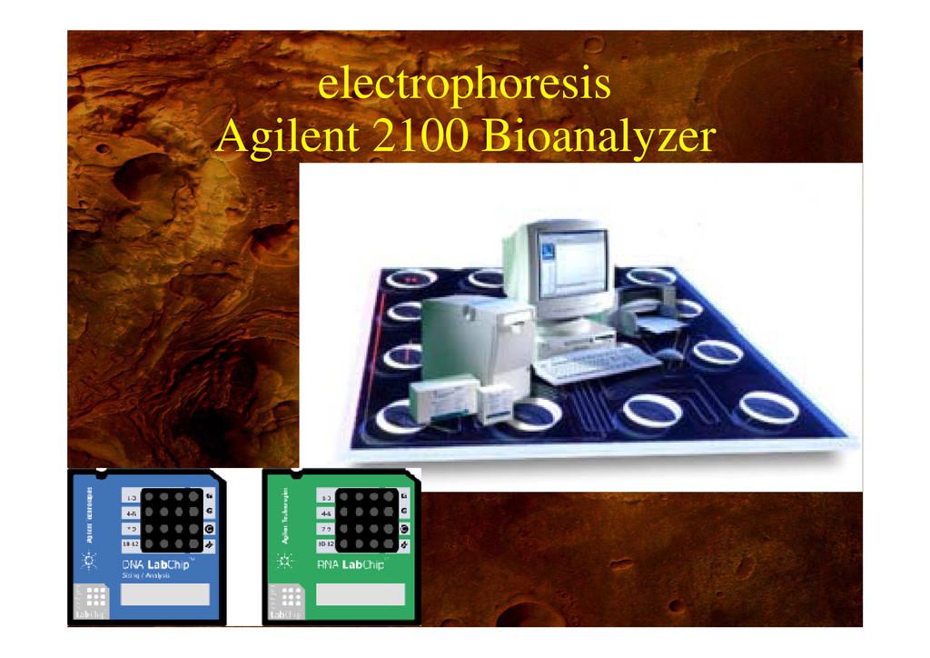 electrophoresis Agilent 2100 Bioanalyzer p