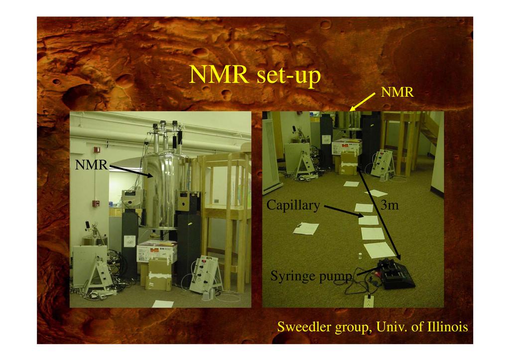 NMR set-up NMR NMR 3m Capillary Syringe pump Sw...