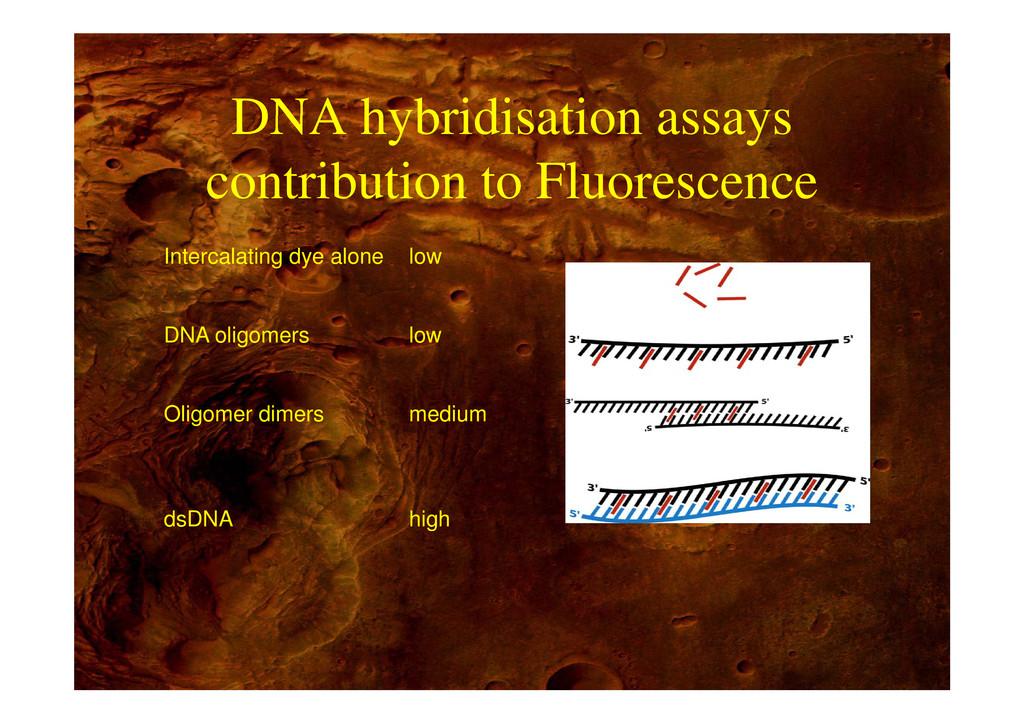 DNA hybridisation assays DNA hybridisation assa...