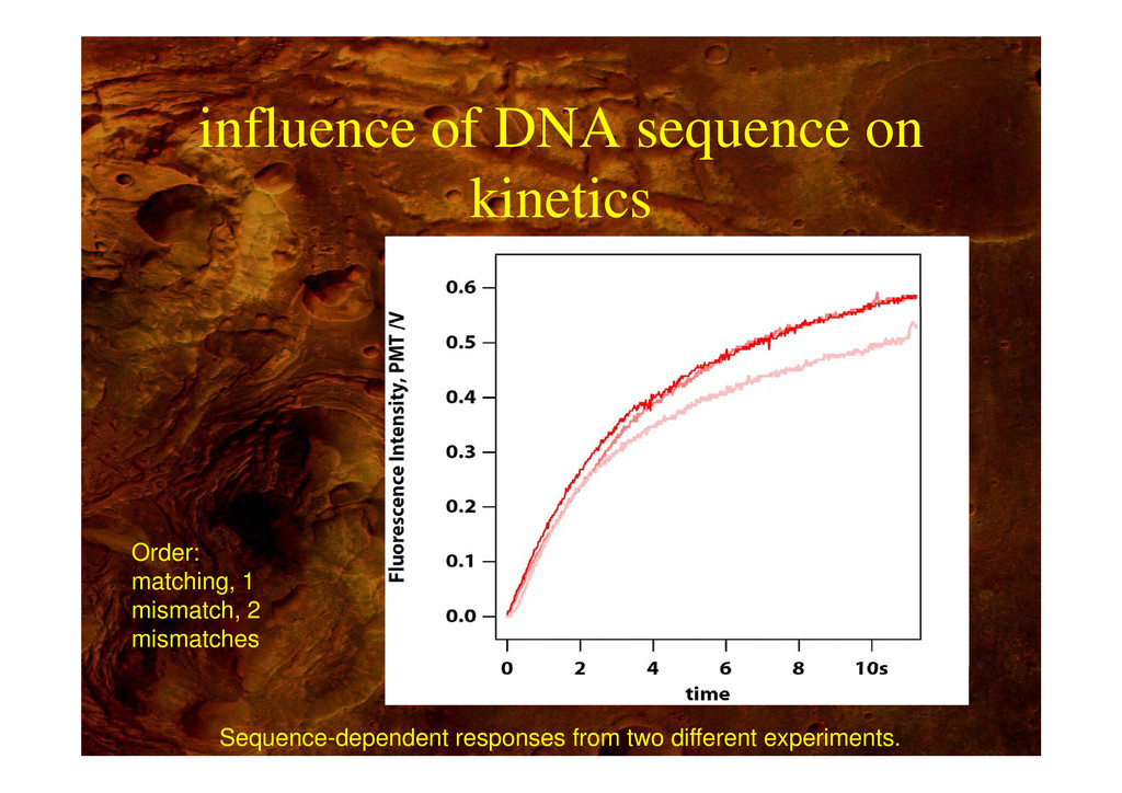 influence of DNA sequence on influence of DNA s...