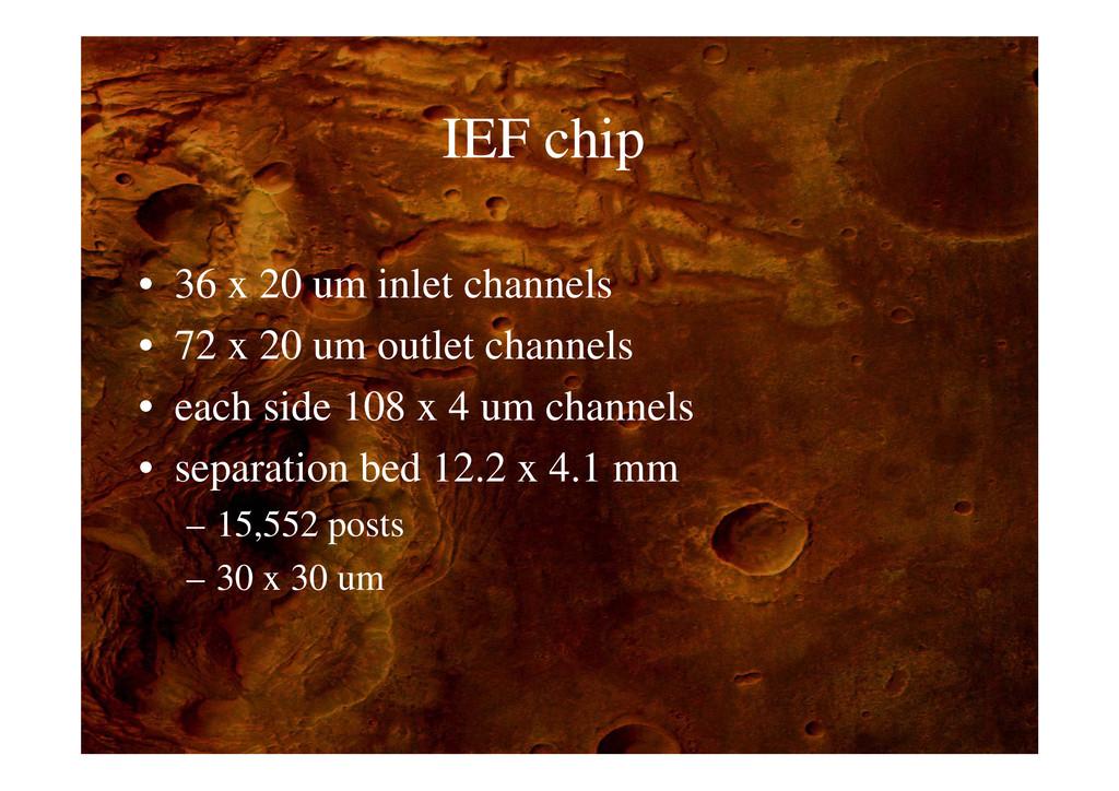 IEF hi IEF chip • 36 x 20 um inlet channels • 7...