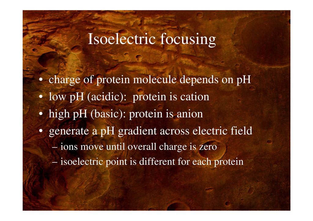 I l t i f i Isoelectric focusing • charge of pr...