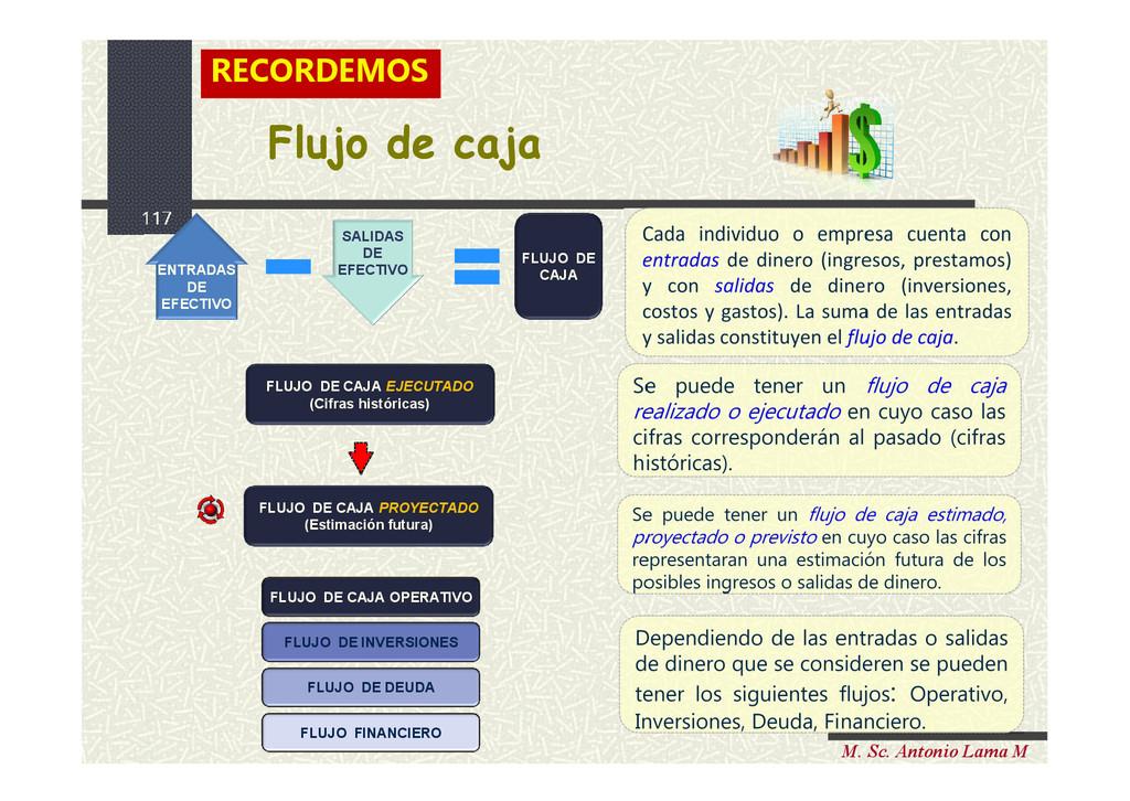117 M. Sc. Antonio Lama M FLUJO DE CAJA Flujo d...