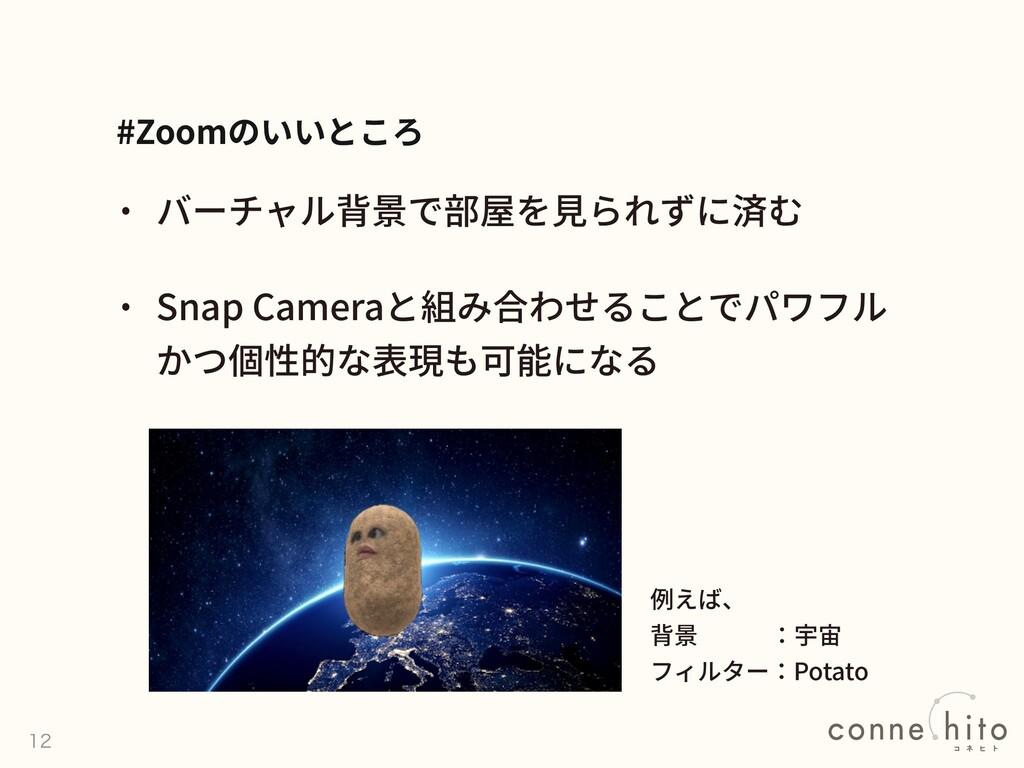 Snap Camera #Zoom    Potato